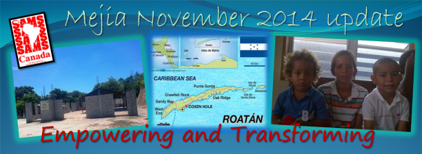Mejia November 2014 update